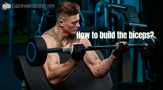 How to build the biceps?